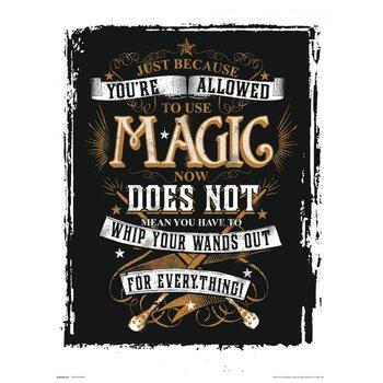 Reprodução do quadro  Harry Potter - Magic