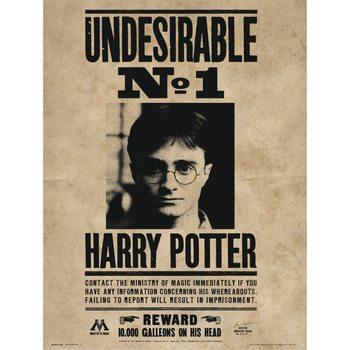 Reprodução do quadro  Harry Potter - Undesirable No1
