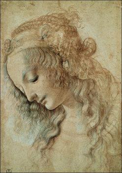 Reprodução do quadro  Head of a Woman