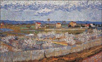 Reprodução do quadro La Crau with Peach Trees in Blossom, 1889