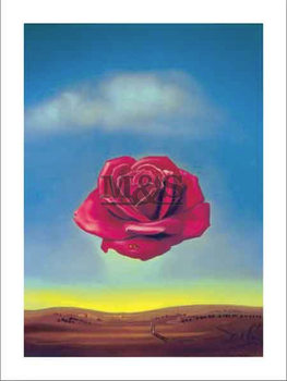 Reprodução do quadro Medative rose
