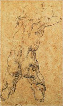 Reprodução do quadro  Michelangelo - Nudo Virile Inginocchiato