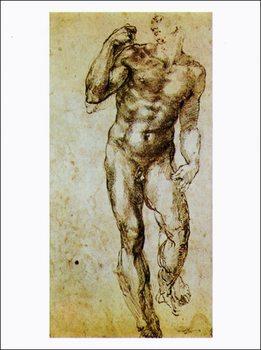 Reprodução do quadro  Michelangelo - Studio Di Nudo