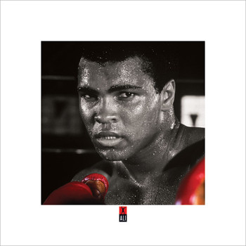 Reprodução do quadro  Muhammad Ali Boxing S.