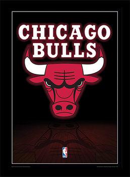 NBA - Chicago Bulls Logo Poster Emoldurado