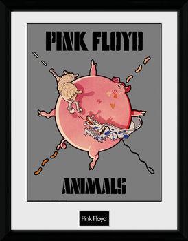 Pink Floyd - Animals Poster Emoldurado