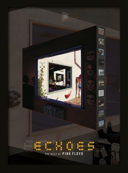 Pink Floyd - Echoes Poster Emoldurado