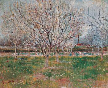Reprodução do quadro Plum Trees: Orchard in Blossom, 1888