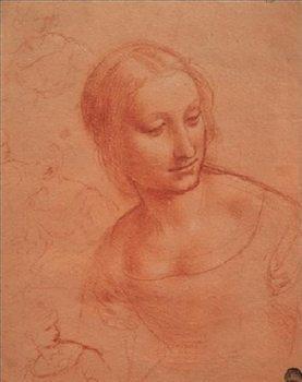 Reprodução do quadro  Portrait of a Young Woman - Busto di giovane donna
