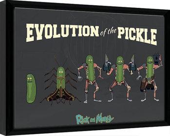 Rick & Morty - Evolution Of The Pickle Poster Emoldurado