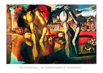 Reprodução do quadro  Salvador Dali - Metamorphosis Of Narcissus