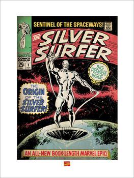 Reprodução do quadro  Silver Surfer