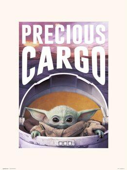 Reprodução do quadro Star Wars: The Mandalorian - Precious Cargo