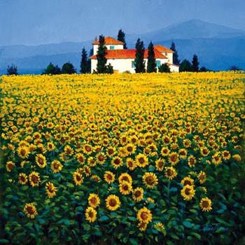 Reprodução do quadro Sunflowers Field