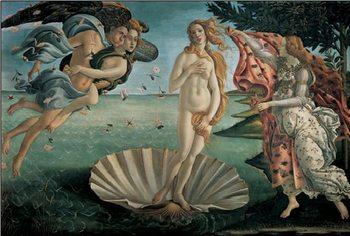 Reprodução do quadro The Birth of Venus