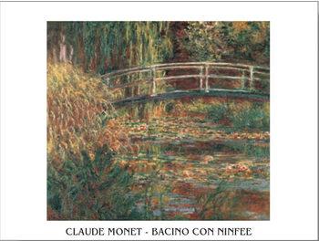 Reprodução do quadro The Water-Lily Pond