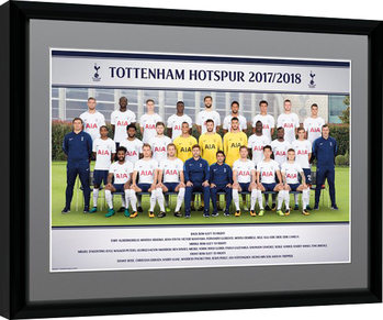 Tottenham Hotspur - Team Photo 17/18 Poster Emoldurado