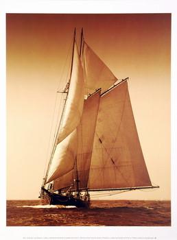 Reprodução do quadro Under Sail I