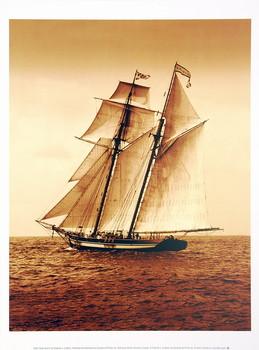 Reprodução do quadro Under Sail II