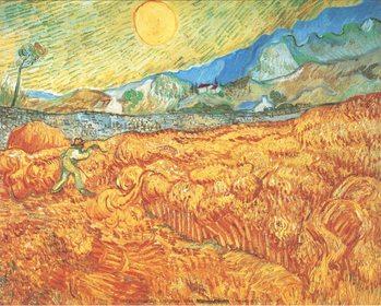 Reprodução do quadro Wheat Field with Reaper, 1889