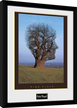 Poster Emoldurado Pink Floyd - Tree