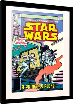 Poster Emoldurado Star Wars - Princess Alone