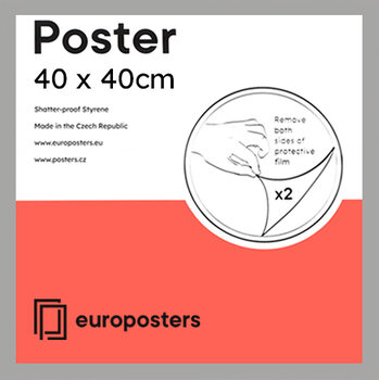 POSTERS Frame - Poster 40x40 cm Silver - Wood