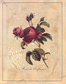 Rose Perfume Reproduction d'art