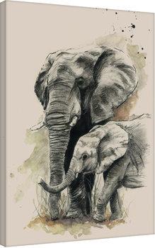 Sarah Stokes - Proud Canvas Print