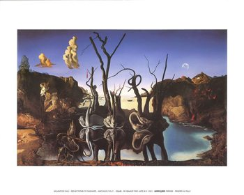 Swans Reflecting Elephants, 1937 Reproduction d'art