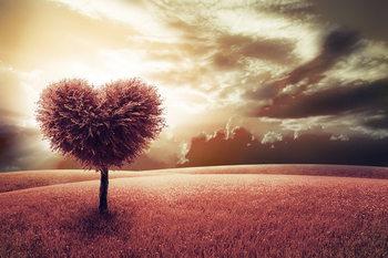 Tableau sur verre Tree - Heart