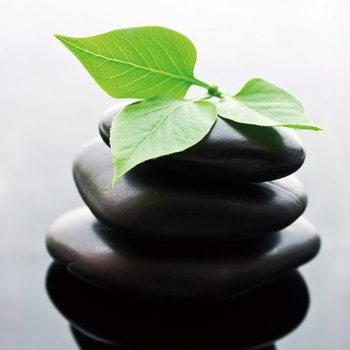 Tableau sur verre Zen - Green