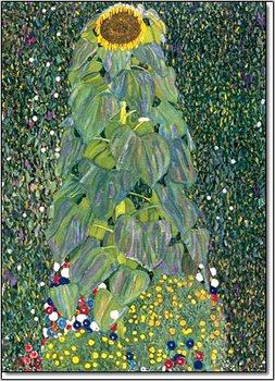 Die Sonnenblume 1905 Taidejuliste