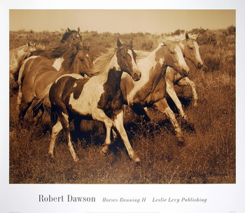 Horses Running II Taidejuliste