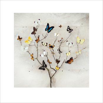 Ian Winstanley - Tree of Butterflies Taidejuliste