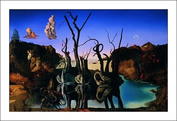 Salvador Dali - Reflection Of Elephants Taidejuliste