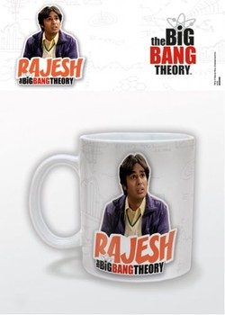 The Big Bang Theory - Rajesh Tasse
