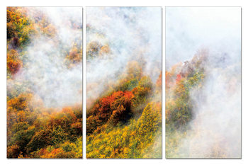 Colorful landscape Taulusarja