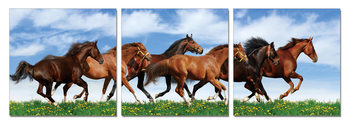 Horses - Running Horses on the Grass Taulusarja
