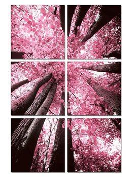 Pink treetop Taulusarja