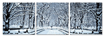 Snowy park Taulusarja