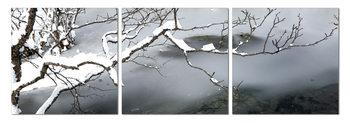 Winter Snapshot Taulusarja