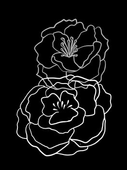 Tela Black Poppies