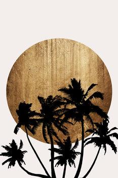 Tela Miami Beach
