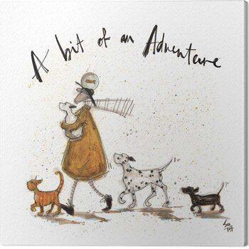 Tela Sam Toft - A Bit of an Adventure