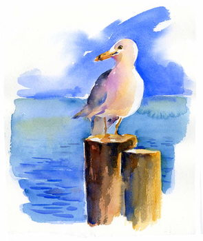 Tela Seagull on dock, 2014,