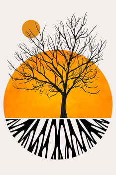 Tela Warming Roots