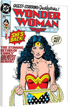 Tela DC Comics - Wonder Woman - She's Back