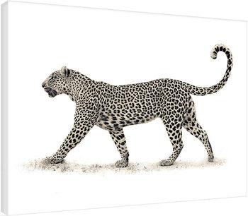 Tela Mario Moreno - The Leopard