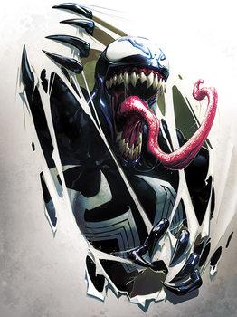 Tela  Venom - Tearing Through